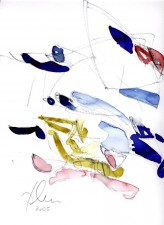 http://atelierbrandner.de/files/gimgs/th-26_Aqu-2005-Hoehensegel-web.jpg